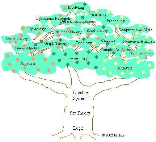 شجرة الرياضيات المثمرة